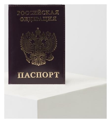 Обложка для паспорта, цвет тёмно-фиолетовый  NNB
