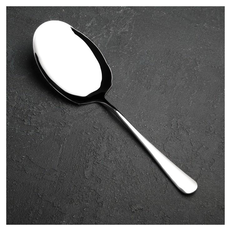 Ложка гарнирная «Моника», 27 см  NNB