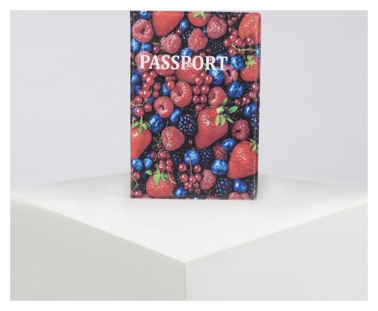 Обложка для паспорта, цвет разноцветный  NNB