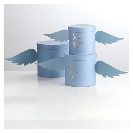 """Набор коробок """"С крыльями"""", голубой, 3 в 1, 21,5 х 21,5 х 21,5 - 17 х 17 х 16,5 см  NNB"""