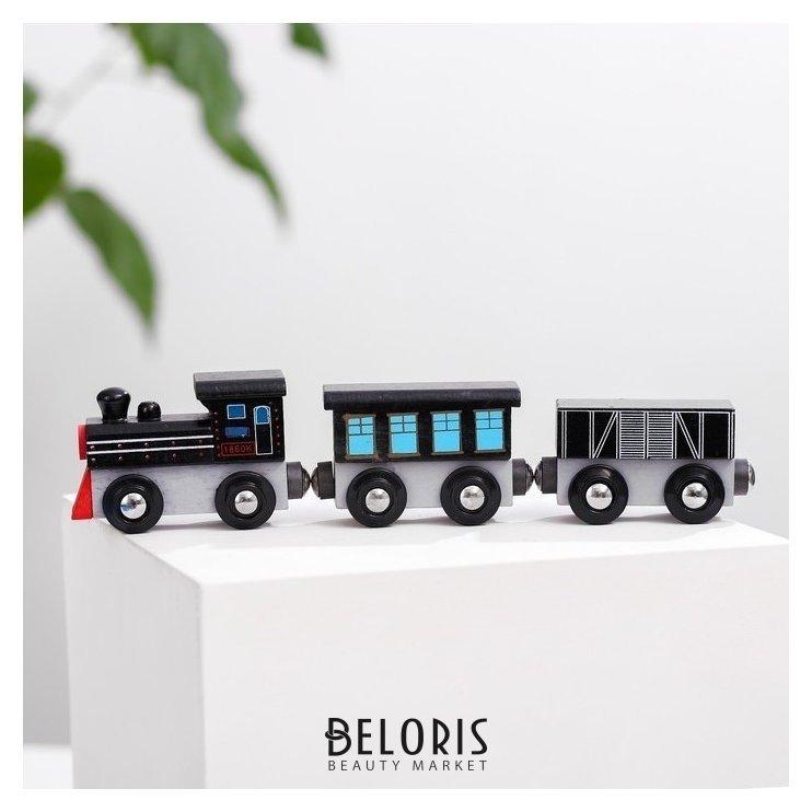 Паровоз и два вагона «Магнитные» 3×7,5×19 см NNB