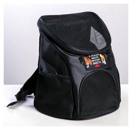 """Рюкзак для переноски животных """"В любом месте - веселее вместе"""" 31*23*30 см  Пушистое счастье"""