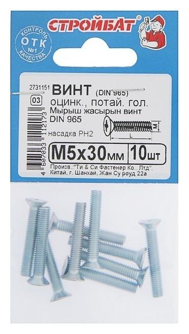 Винт DIN 965, M5 X 30 мм, оцинкованный с потайной головкой, 10 шт.  Стройбат