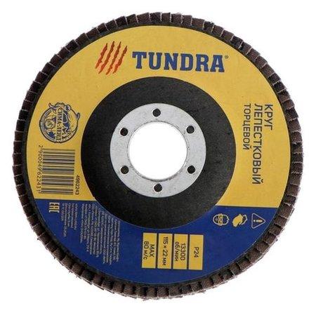 Круг лепестковый торцевой Tundra, 115 х 22 мм, Р24  Tundra