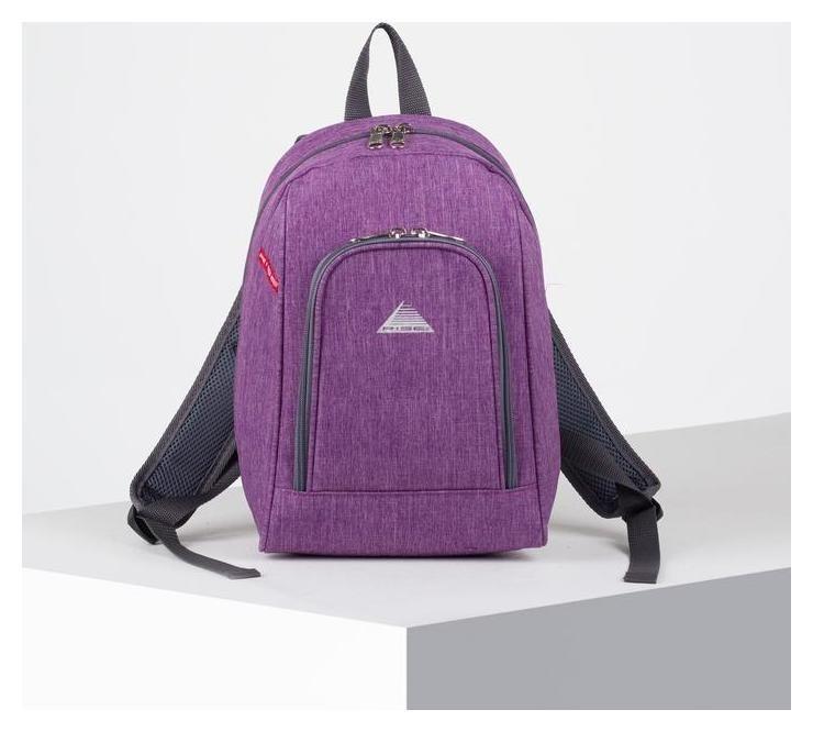 Рюкзак молодёжный, отдел на молнии, наружный карман, цвет сиреневый  RISE