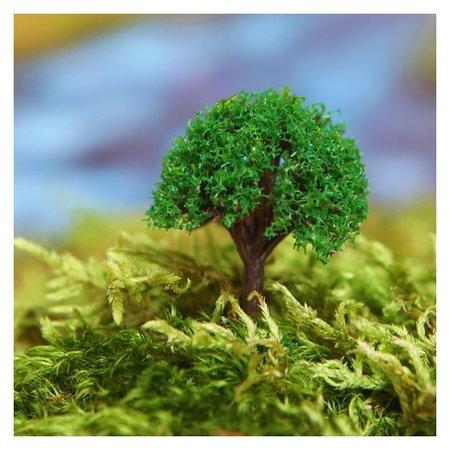 Миниатюра кукольная, набор 4 шт «Дерево» размер 1 шт: 2×2×3,5 см, цвет зелёный NNB