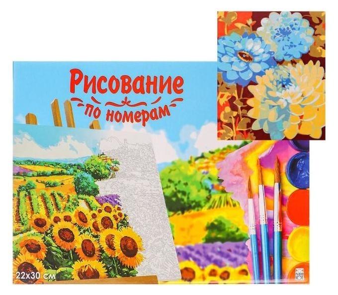 Холст с красками 22×30 см по номерам «Красивые цветы» Рыжий кот