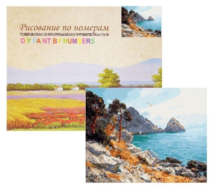 Картина по номерам «Север франции» Paintboy