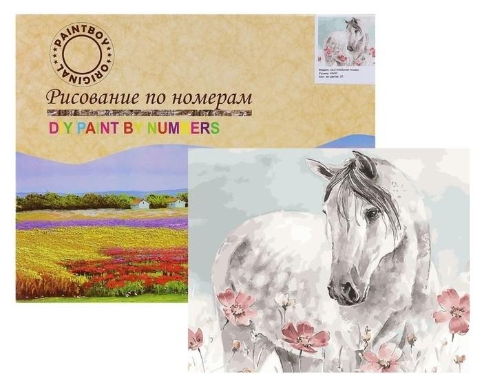 Картина по номерам «Белая лошадь» Paintboy
