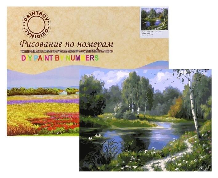 Картина по номерам «Летняя прогулка» Paintboy