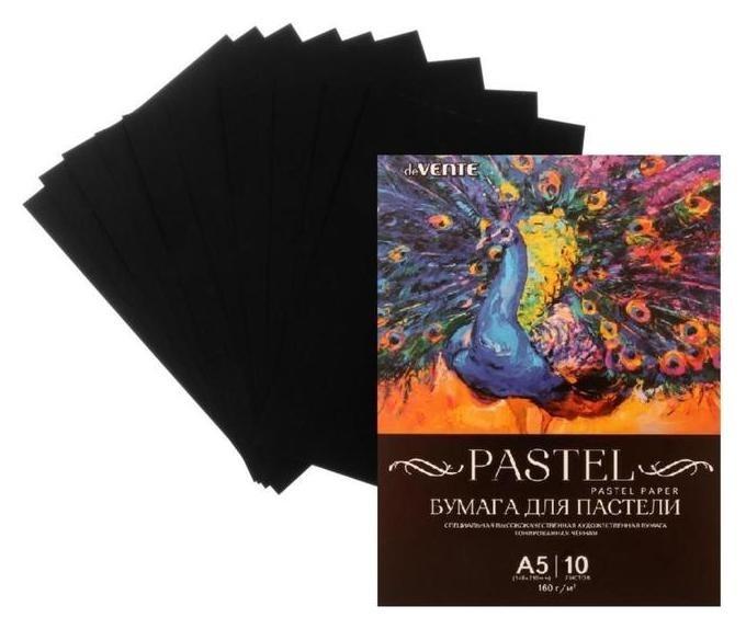 Бумага для пастели набор, А5, Devente, 10 листов, 160 г/м², чёрная, в пакете  deVente