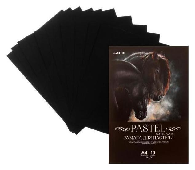 Бумага для пастели набор, А4, Devente, 10 листов, 120 г/м², чёрная, в пакете  deVente