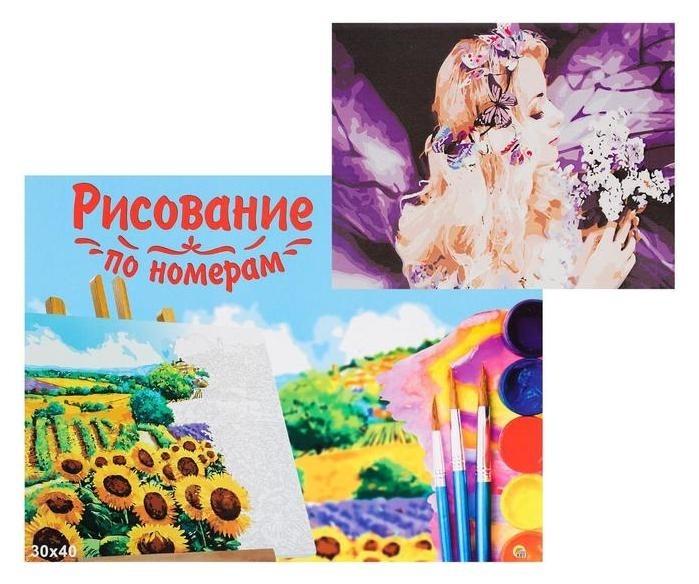 Холст с красками 30×40 см, по номерам «Потрясающая девушка» Рыжий кот