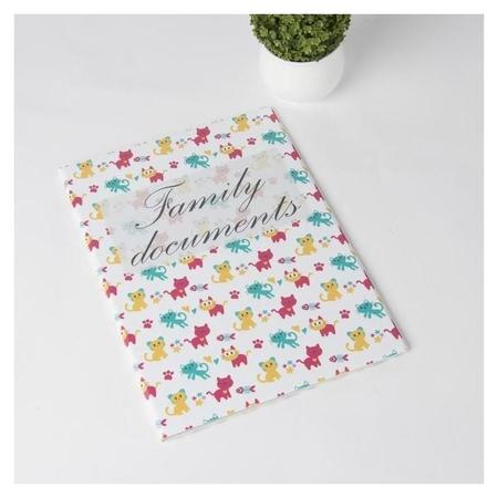 Папка для семейных документов, 4 комплекта, цвет белый NNB