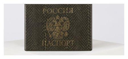 Обложка для паспорта, цвет зелёный  NNB