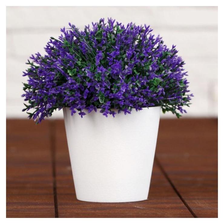 """Бонсай """"Мелкие цветочки"""" 8х12 см  NNB"""