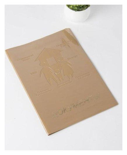 Папка для семейных документов, 1 комплект, цвет бежевый  NNB