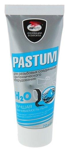 Паста уплотнительная Pastum H2o, тюбик 70 г Pastum