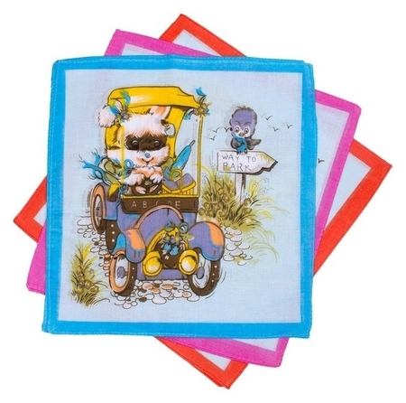 Набор детских носовых платков Etteggy (6шт) 25х25см печать полотн. 66г/м, хл100%  Etteggy