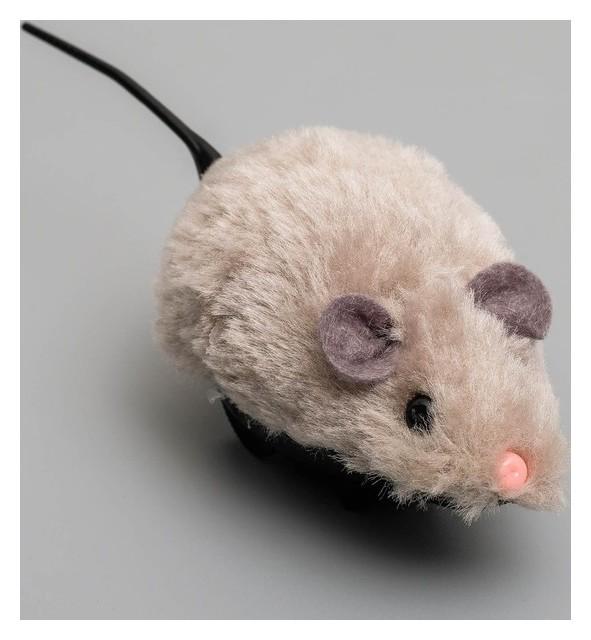 Мышь заводная меховая малая, 8,5 см, серая  Пижон