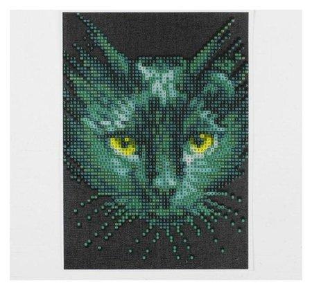 Алмазная вышивка с частичным заполнением «Чёрный кот», 15 х 21 см, холст. набор для творчества  Школа талантов
