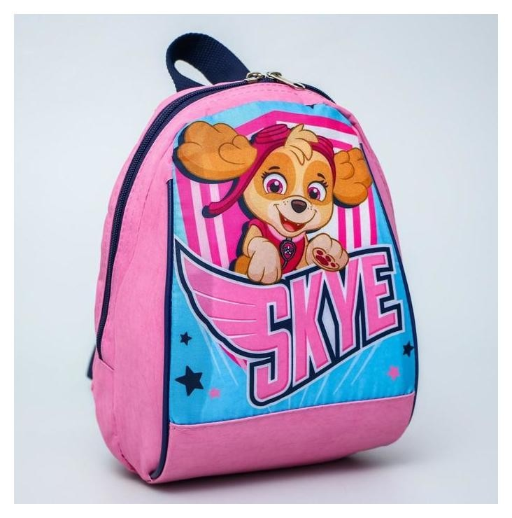 """Рюкзак """"Скай"""", 20*13*26, отд на молнии, розовый  Paw patrol"""