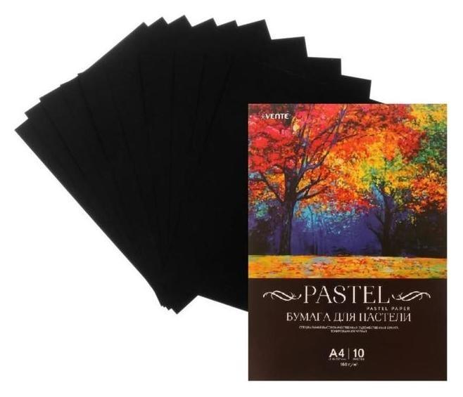 Бумага для пастели набор, А4, Devente, 10 листов, 160 г/м², чёрная, в пакете  deVente