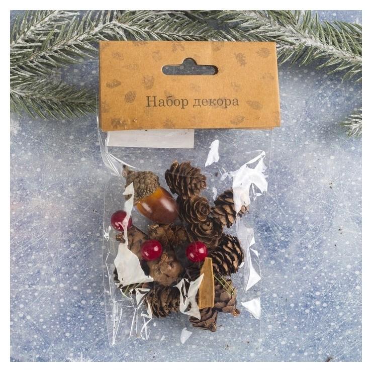 Набор новогоднего декора Пряные шишки Ws-027 NNB