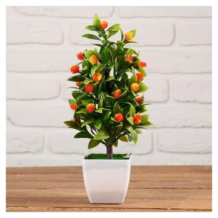 Бонсай Куст с цветами 11х26 см NNB
