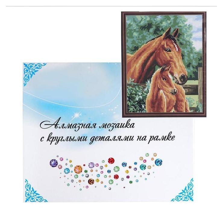 Алмазная мозаика с подрамником, полное заполнение 40×50 см «Лошади» NNB