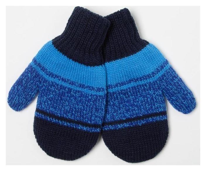 Варежки для мальчика, цвет голубой/тёмно-синий, размер 12 Снежань