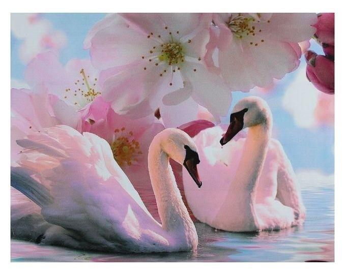 Картина на подрамнике Лебеди под цветами NNB