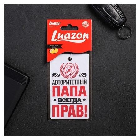 """Ароматизатор в авто, серия приколы """"Папа прав!"""", антитабак  Luazon"""