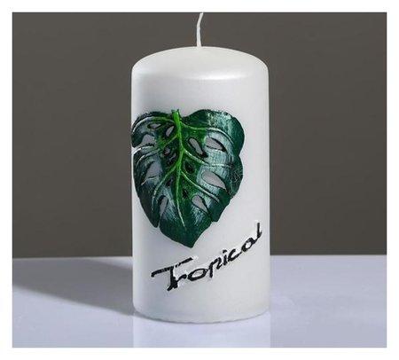 """Свеча - цилиндр """"Tropical"""" 6×11,5 см  Poland Trend Decor Candle"""