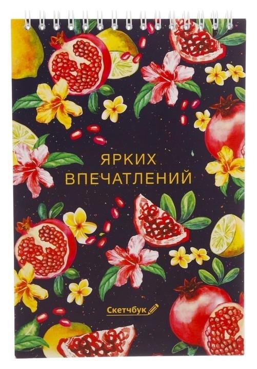 Скетчбук на гребне Ярких впечатлений А5, 40 листов ArtFox