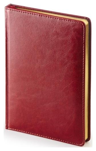 Ежедневник недатированный бордо,а5,145х205мм,136л, Sidney Nebraska  Альт