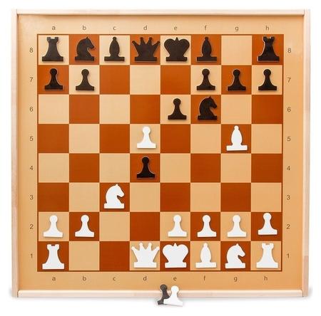 Настольная игра шахматы демонстрационные магнитные арт.01756  Десятое королевство