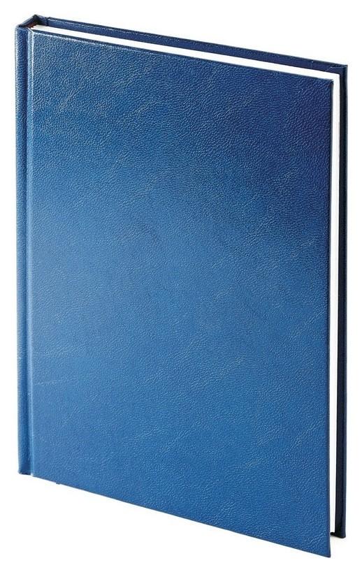 Ежедневник датированный 2021, а5+, 168л, Ideal NEW синий 3-344/05  Альт