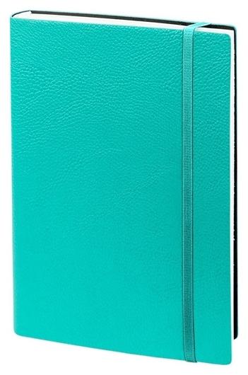 Ежедневник недатированный аква, А5, 160л., Prime Az683/aqua  InFolio