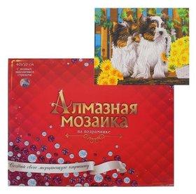Алмазная мозаика классическая 40х50 см, с подрамником, с полным заполнением «Маленькие йоркширские терьеры»  Рыжий кот