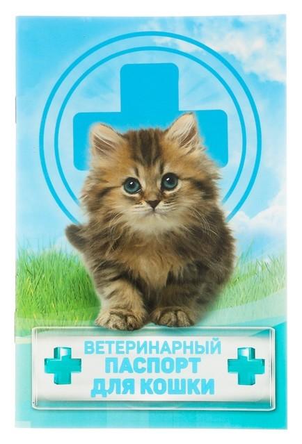"""Ветеринарный паспорт """"Для кошки""""  NNB"""