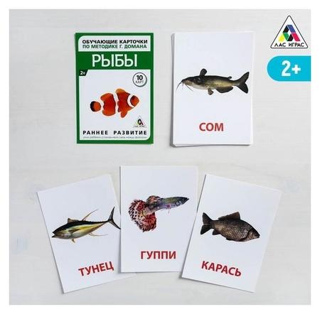 Обучающие карточки по методике Г. домана «Рыбы», 10 карт, А6  Лас Играс