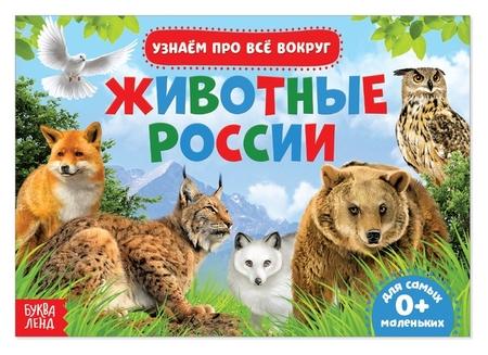 Обучающая книжка «Животные россии», 18 животных  Буква-ленд