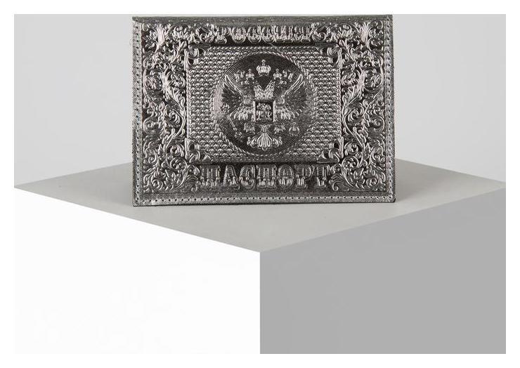 Обложка для паспорта 9,5*0,5*13,5, тисн.блинт, серебрянный NNB