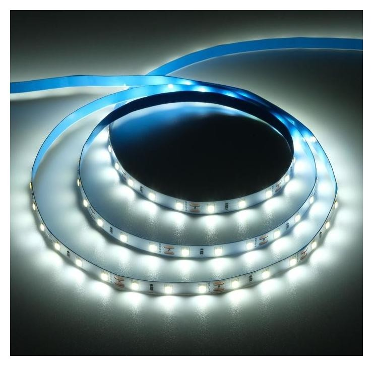Светодиодная лента на катушке Ecola LED Strip Pro, 8 мм, 12 В, 6000 К, 11 вт/м, Ip20, 5 м Ecola