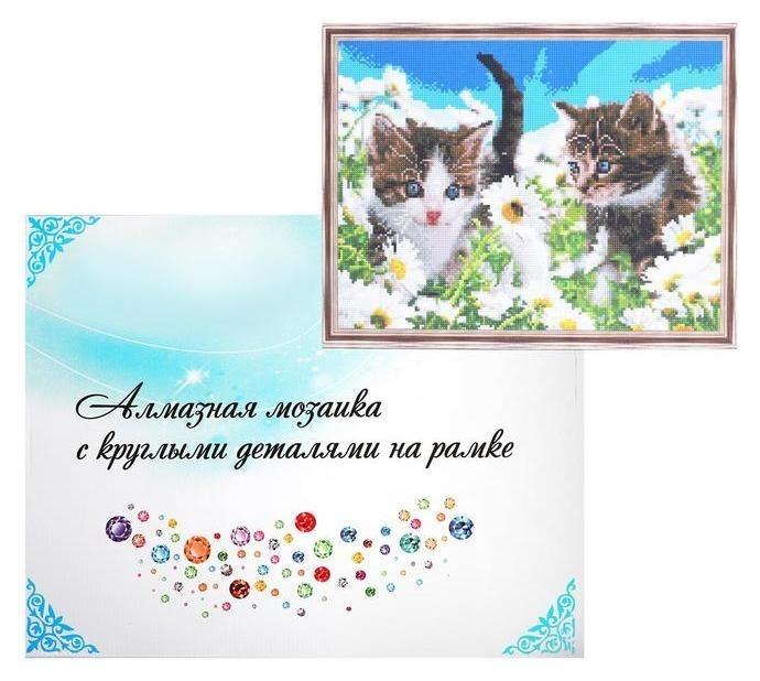 Алмазная мозаика с подрамником, полное заполнение, 40×50 см «Котята в ромашках» NNB