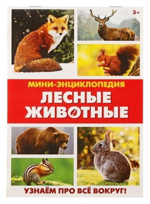 Мини-энциклопедия «Лесные животные», 20 стр. Буква-ленд