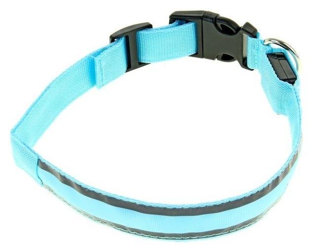 Ошейник с подсветкой и 2 светоотражающими полосами, 50-58 см, 3 режима свечения, голубой Пижон