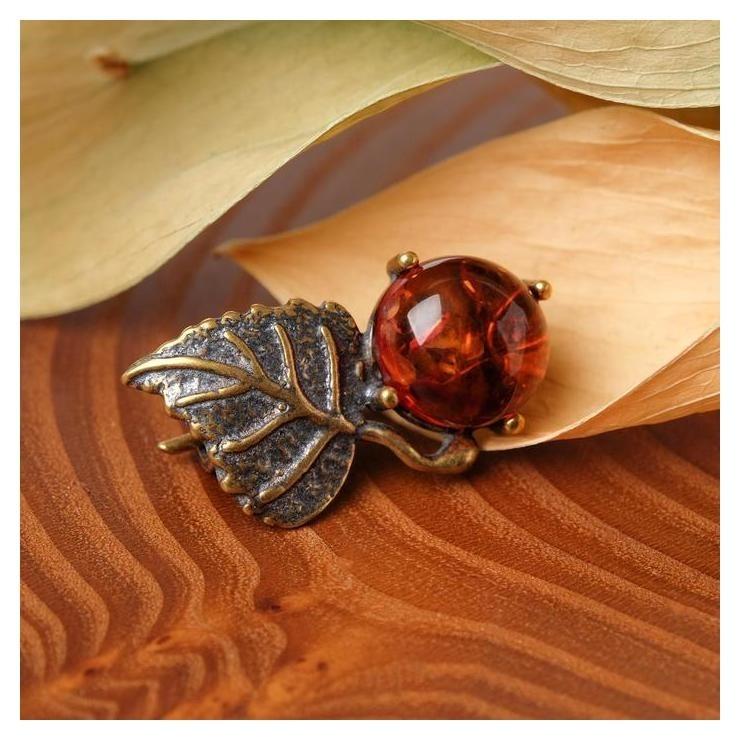 Брошь Янтарь берёзка, цвет коричневый в бронзе NNB