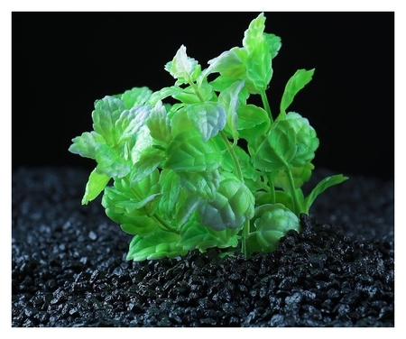 Растение искусственное аквариумное кустовое, 10 см, зеленый  КНР